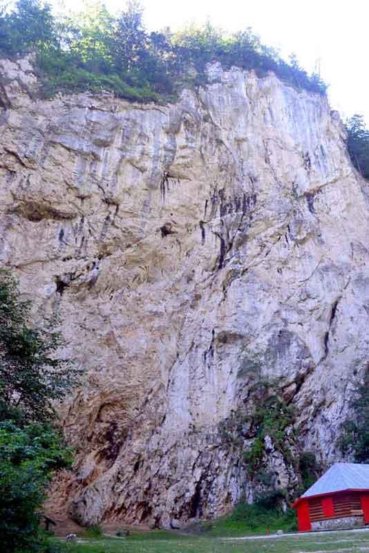 Falaise dans les gorges de Prapastiile Zarnestilor