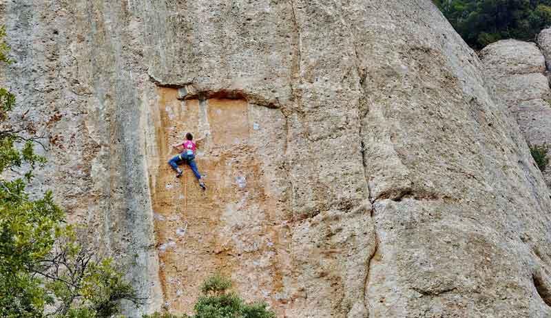 Agulla del Senglar à Montserrat