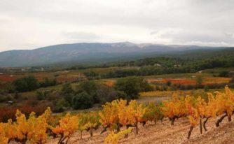 L'automne au pied du Mont Ventoux...